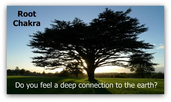 root chakra healing tree