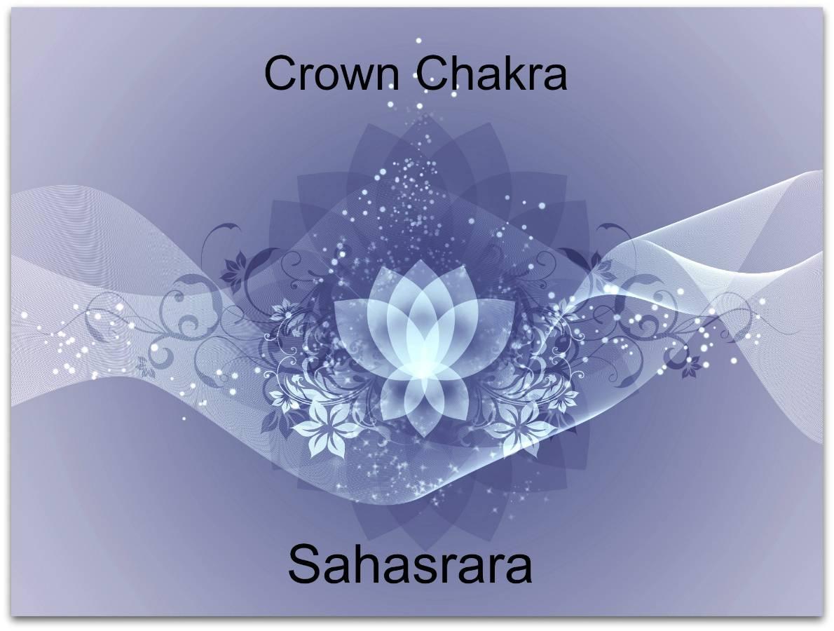 crown chakra lotus